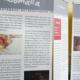 """Ausstellung """"Über(s)leben"""""""