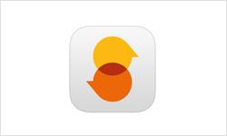 Einstieg Deutsch (App)
