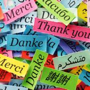 Sprachenvielfalt in der Grundschule – Symbolbild (Foto: aaabbc – stock.adobe.com)