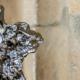 Der Voltaire-Preis, Skulptur von Mikos Meininger (Foto: Tobias Hopfgarten)